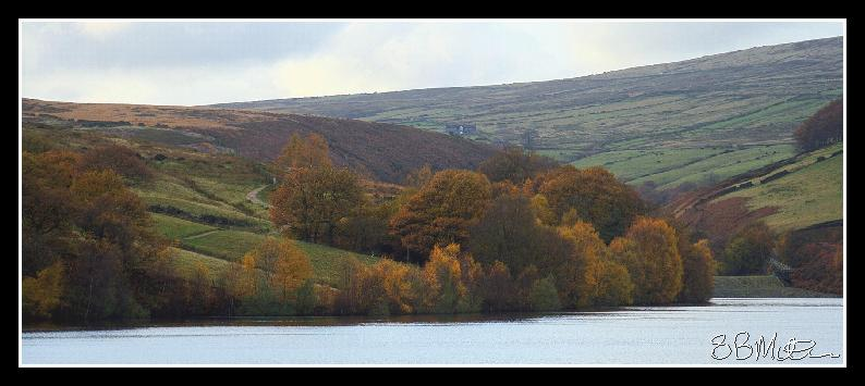 Digley in Autumn: Photograph by Steve Milner