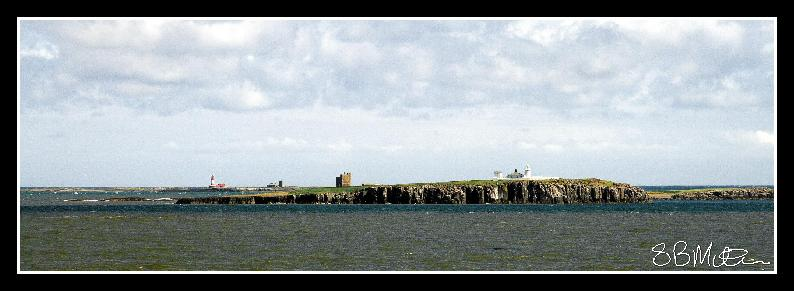 The Farne Isles: Photograph by Steve Milner