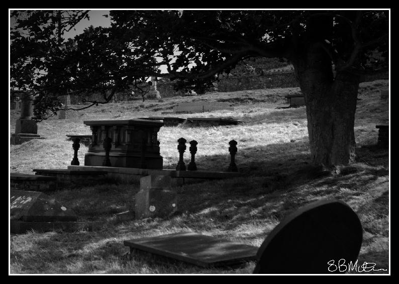 Shadowed Tomb: Photograph by Steve Milner