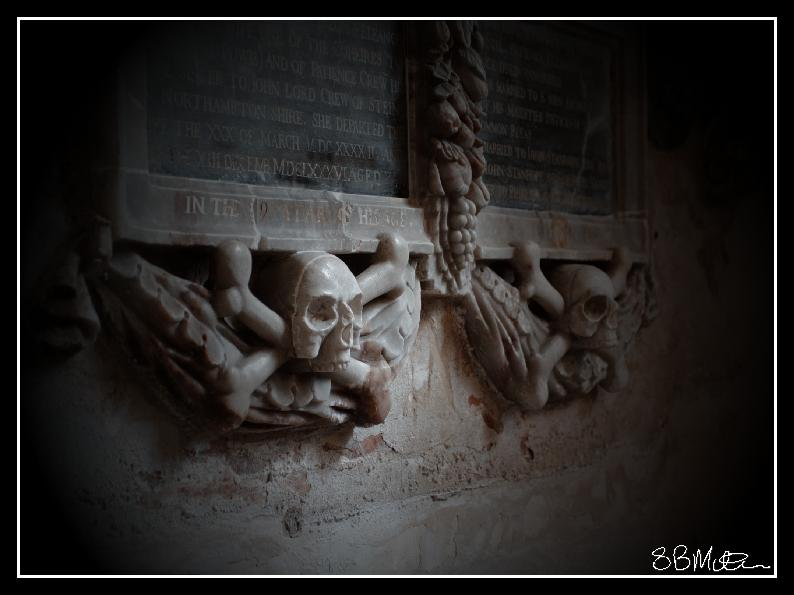 Skull and Bones: Photograph by Steve Milner