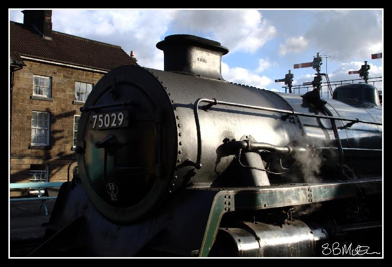 75029 at Grosmont: Photograph by Steve Milner